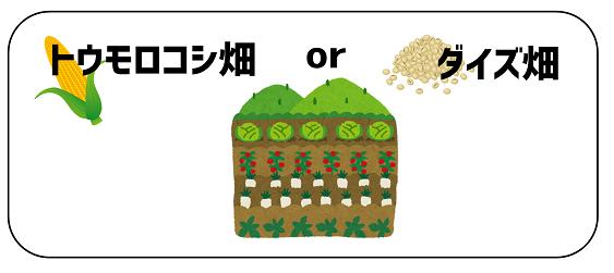 daizutoumorokosi